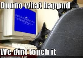 computerkittys